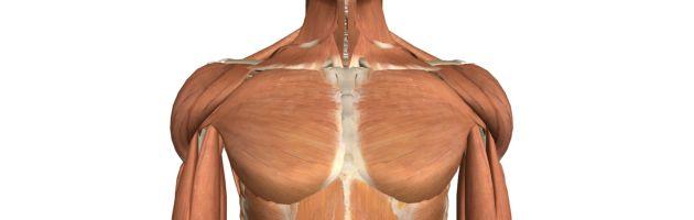 Shoulder Ligament Injuries - Innova Pain ClinicInnova Pain Clinic