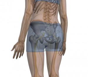 Sciatica chiropractor
