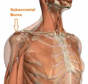 subacromial bursa pain st george chiropractor