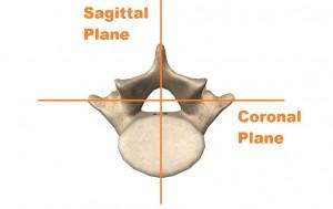Coronal and sagittal planes