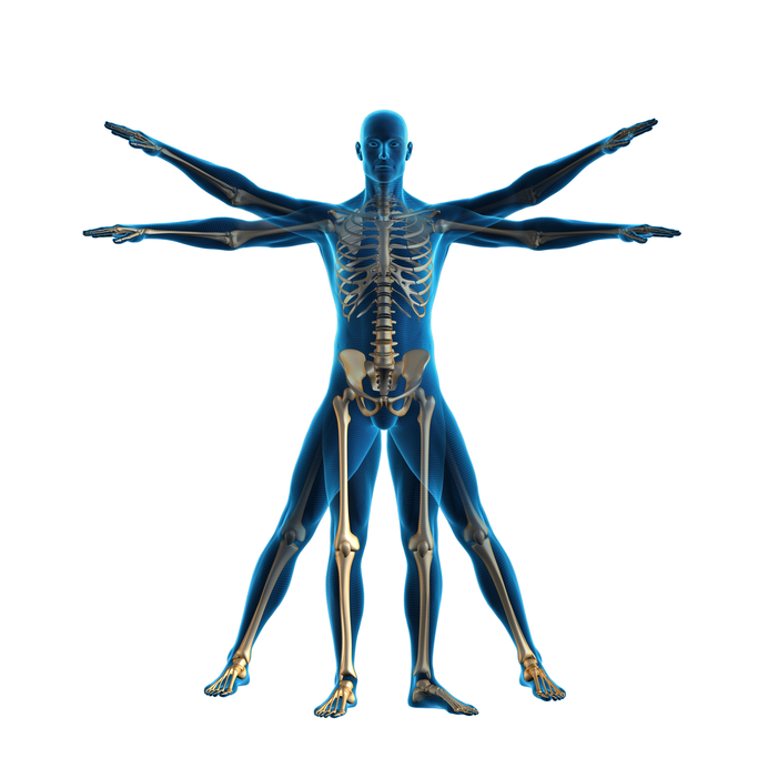 What to expect from the best St George Chiropractor